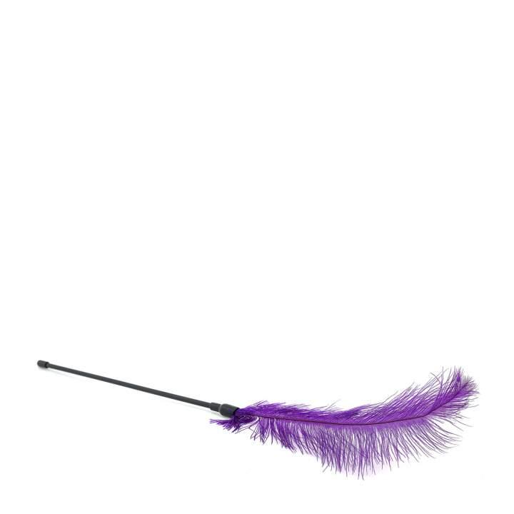 Fioletowe pojedyncze piórko do gry wstępnej dla kobiet i mężczyzn